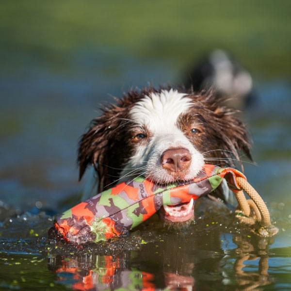 Major Dog Buoy, Large