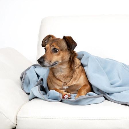 Doctor Bark zachte fleece deken hemelsblauw