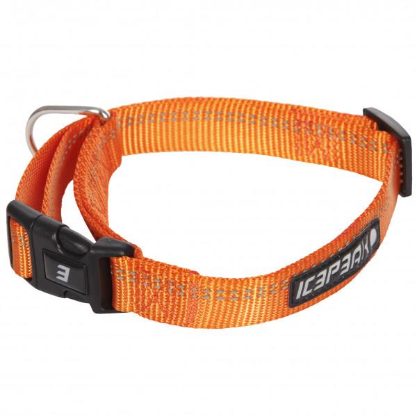 Icepeak Pet Winner Basic Halsband, Oranje