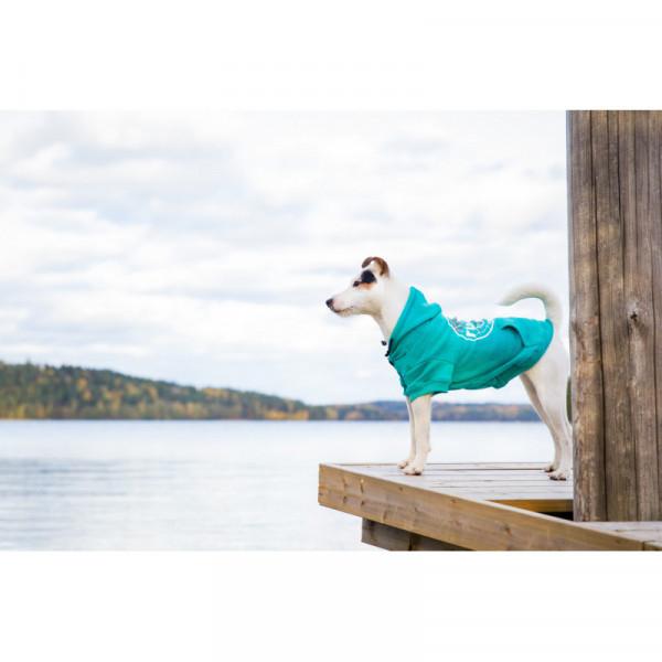 Rukka Pets Hoody College honden sweatshirt, emerald