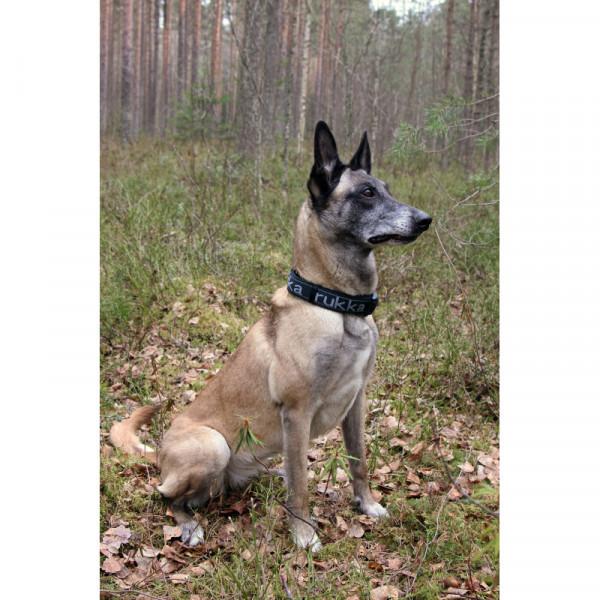 Rukka Pets Solid web halsband, Zwart/Grijs